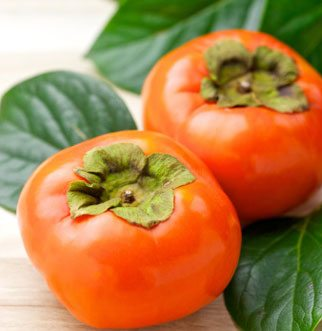 Persimmon Nutrient for your Skin
