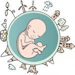 Let your Spiritual Embryo be Born