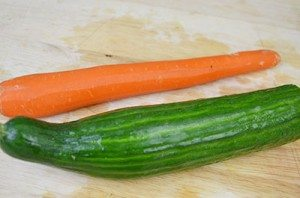 CarrotandCucumber