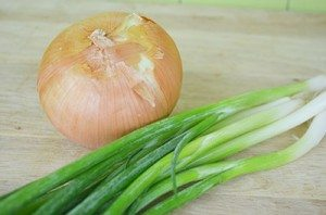 ScallionOnion