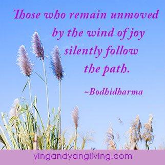 White-Flower-Blue-Sky---BodhidharmaYY