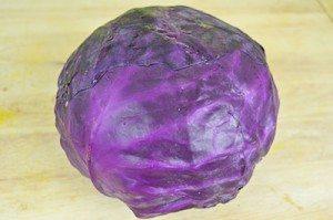 Cabbage-Ingredient