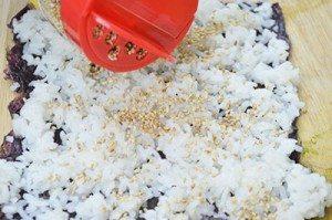 Sesame-Seed-on-Rice