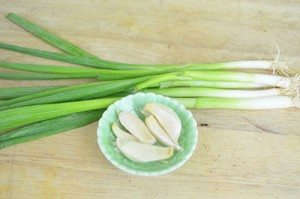 Scallion-Garlic-Ingredient