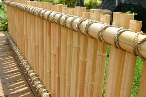 Bamboo Bamboo Garden Bamboo Fence Ying And Yang Living