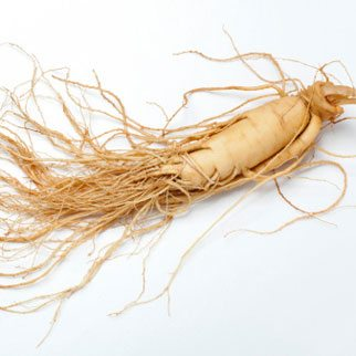 Healthy Ginseng in Every Day Foods and Products