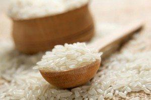 Rice2ForWeb