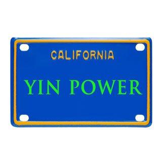 """""""Yin Power"""" by Vickie """"Yin"""" Nelson!"""