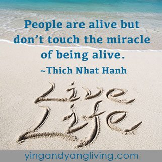 Live-Life-Sign-on-Sand---Thich-Nhat-HahnYY