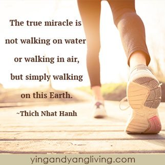 Zen Message Walking on Earth by Thich Nhat Hahn