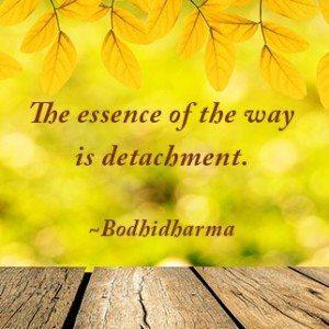 YellowLeaves-Bodhidharma
