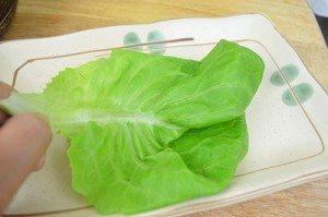 LettuceLeafOnPlate