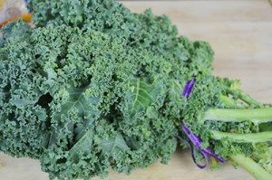 Kale-Ingredient