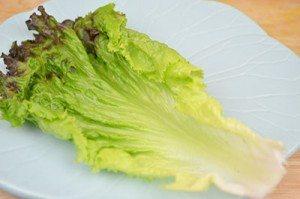 Lettuce-on-Plate
