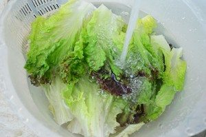 Wash-Lettuce