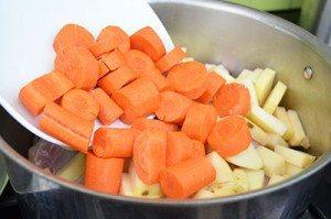 Carrot-in-Chicken