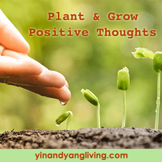PlantingPositiveThoughts322
