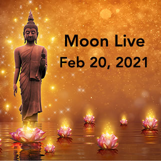 Moon Live: Feb 20, 2021