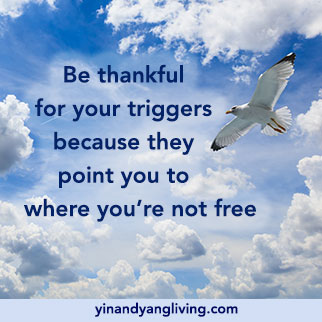 Triggers & Freedom