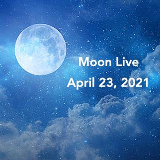 Moon Live, April 23