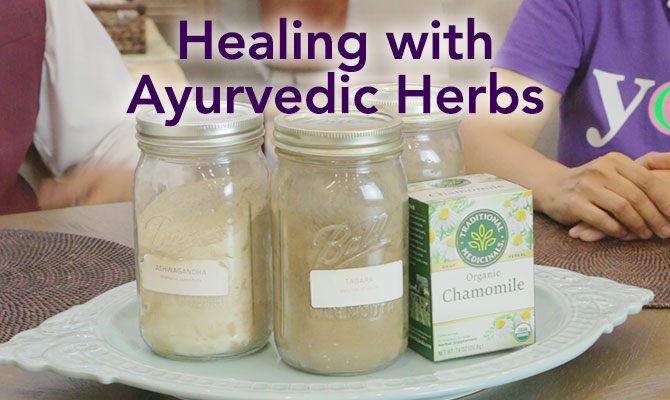 Healing With Ayurveda Herbs