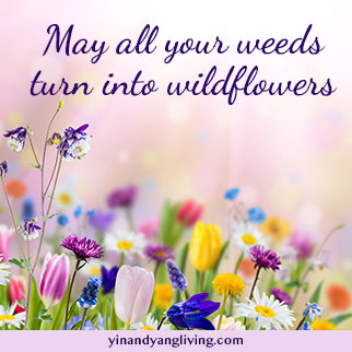Om Message: Wildflowers