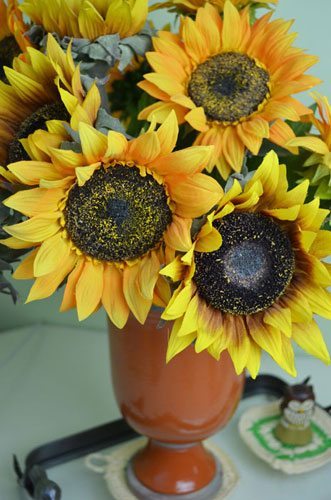 SunflowerDeskArticleforWeb